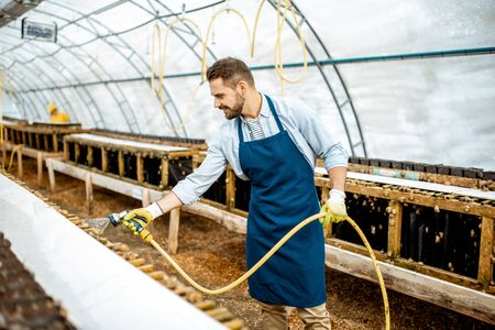 Handsome worker washing shelves with water gun, taking care of the snails in the hothouse of the farm. Concept of farming snails for eating 版權商用圖片