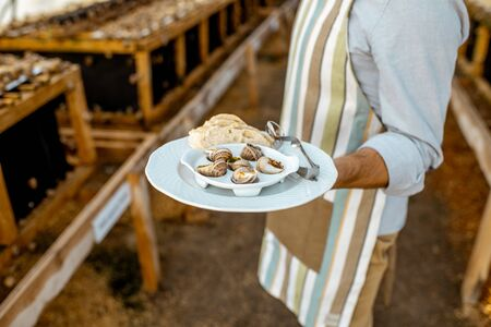Chef holding a plate with cooked snails in a farm. Restaurant with own production of snails concept Stock fotó - 127936025