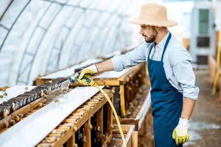 Handsome worker washing shelves with water gun, taking care of the snails in the hothouse of the farm. Concept of farming snails for eating Stock fotó