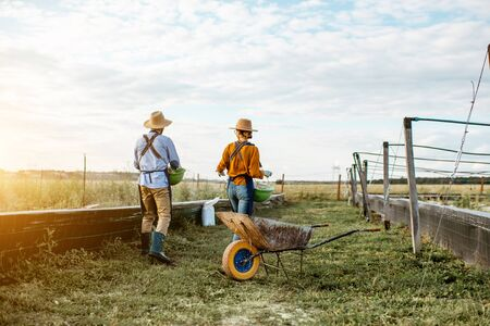 Two well-dressed farmers or agronomists walking on the farmland for growing snails, rear wide angle view. Concept of agribusiness and farming Banque d'images - 127936234