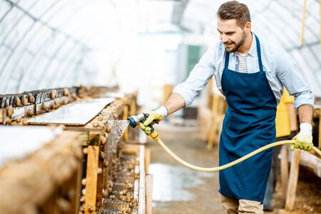 Handsome worker washing shelves with water gun, taking care of the snails in the hothouse of the farm. Concept of farming snails for eating Reklamní fotografie
