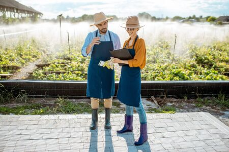 Two young beautifully dressed farmers examining snails growing process on the field with automatic watering during the sunset outdoors