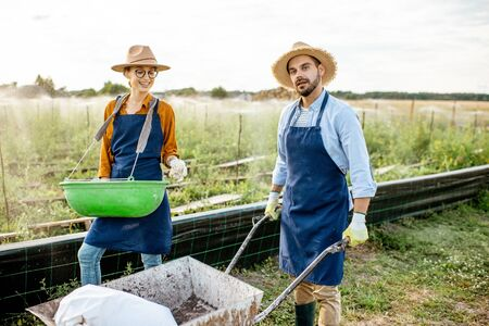 Two well-dressed farmers walking with pushcart and green busket on the farmland for growing snails. Concept of agribusiness and farming Stock Photo