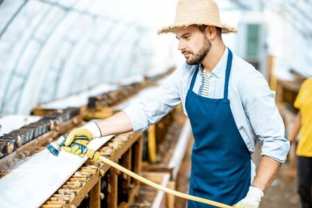 Handsome worker washing shelves with water gun, taking care of the snails in the hothouse of the farm. Concept of farming snails for eating Stock fotó - 127936368