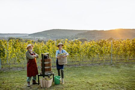 Senior man and young woman as winemakers squeezing grapes with press machine on the vineyard, landscape view on a sunset Stock Photo