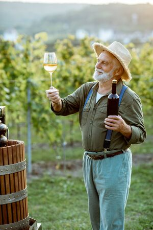 Senior well-dressed winemaker checking wine quality, while standing with wineglass near the press machine on the vineyard on a sunny evening