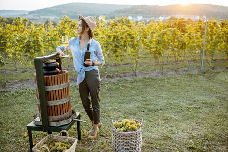 Young and cheerful woman tasting wine, while standing near the press machine on the vineyard on a sunny evening
