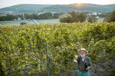 Senior winemaker tasting wine, while standing with wine glass and bottle on the vineyard, wide landscape view from above on a sunset Stock Photo