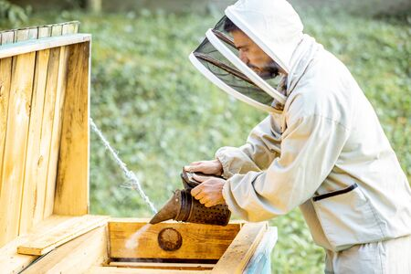 Beekeeper smoking honey bees with bee smoker on the apiary