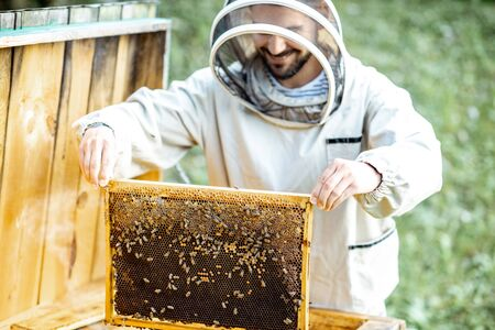 Beekeeper in protective uniform getting honeycombs from the wooden hive, working on the apiary Banque d'images - 132049170