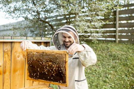 Beekeeper in protective uniform getting honeycombs from the wooden hive, working on the apiary Banque d'images - 132735716