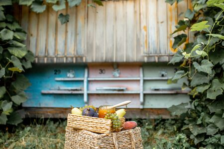 Composition of sweet fruits and jar full of honey with woooden beehives on the background at the apiary Banque d'images - 129801875