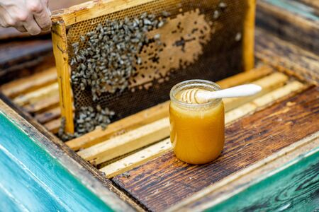 Jar with fresh honey on the beehive with honeycomb on the background
