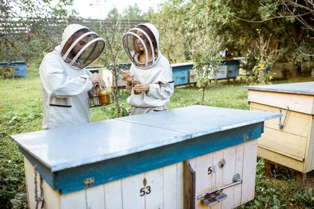 Two beekepers in protective uniform working on the apiary with wooden beehives outdoors Banque d'images - 130612952