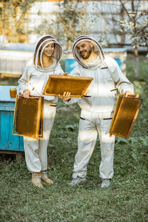 Two beekeepers in protective uniform examining honeycombs while working on a traditional apiary. Concept of beekeeping and small farming Banque d'images - 130613006