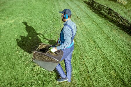 Professional gardener in protective workwear carrying basket full of grass while cutting grass with lawn mower