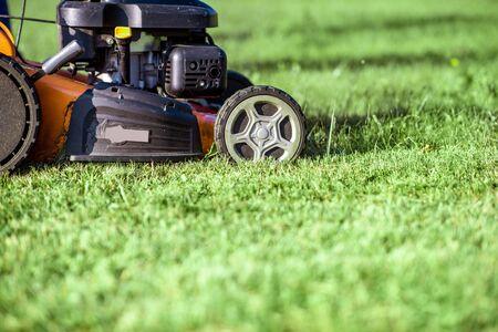 Benzin-Rasenmäher, der Gras schneidet, Nahaufnahme mit Kopienraum. Gartenpflegekonzept