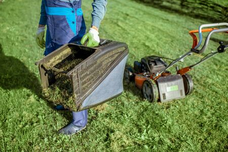 Professional gardener in protective workwear carrying basket full of grass while cutting grass with lawn mower, close-up