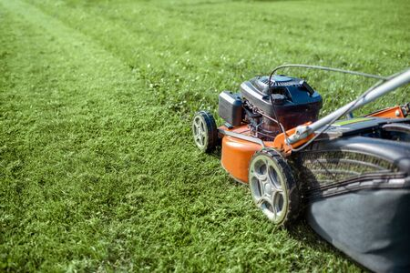 Gasoline lawn mower cutting grass, close-up. Backyard care concept