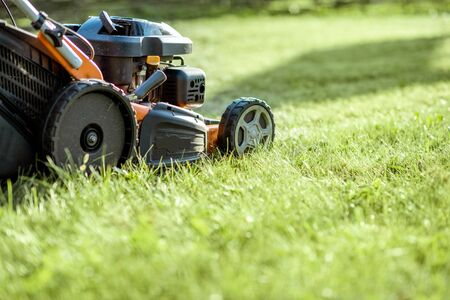 Gasoline lawn mower cutting grass, close-up with copy space. Backyard care concept Stockfoto
