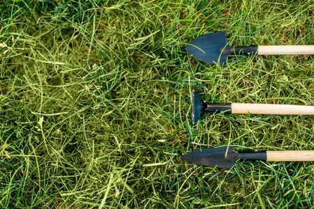 Small garden tools on the grass