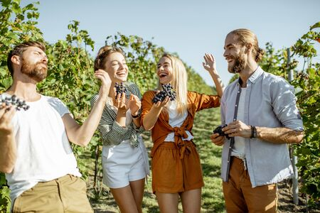 Group of a young friends tasting grapes on the vineyard, having fun while hanging out together at the winery on a sunny morning Stock Photo