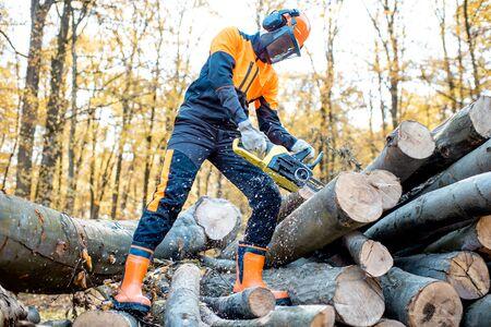 Professioneller Holzfäller in Arbeitsschutzkleidung, der mit einer Kettensäge im Wald arbeitet und Holzstämme sägt
