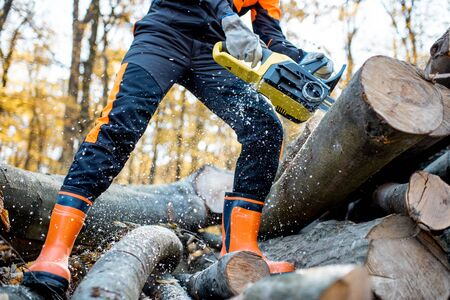 Bûcheron professionnel en vêtements de travail protecteurs travaillant avec une tronçonneuse dans la forêt, sciant des bûches de bois, vue rapprochée sans visage Banque d'images