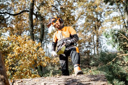 Full length portrait of a professional lumberman in protective workwear logging with chainsaw in the pine forest
