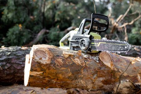 Electric chainsaw on the wooden log in the forest, Concept of a professional logging with chainsaw