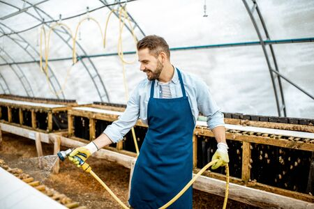 Handsome worker washing shelves with water gun, taking care of the snails in the hothouse of the farm. Concept of farming snails for eating