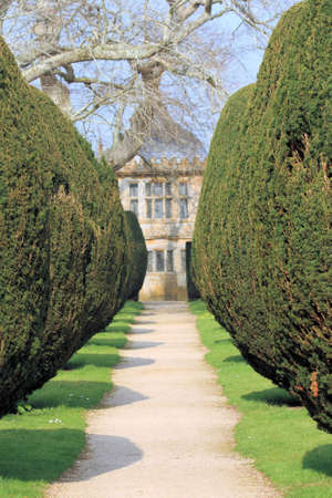 topiary: Topiary Walk Stock Photo