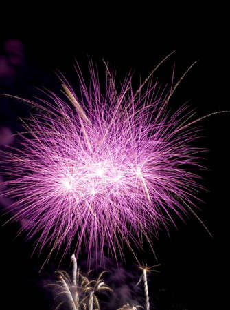 Purple/pink Firework Bursts Imagens - 14261380
