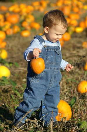 KIDS IN THE PUMPKIN PATCH