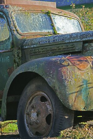 MOSSY TRUCK WINSHEILD AND FENDER photo