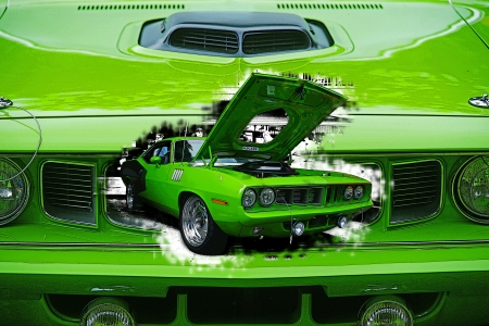 paints: GREEN CUDA DBL. EXPOSURE