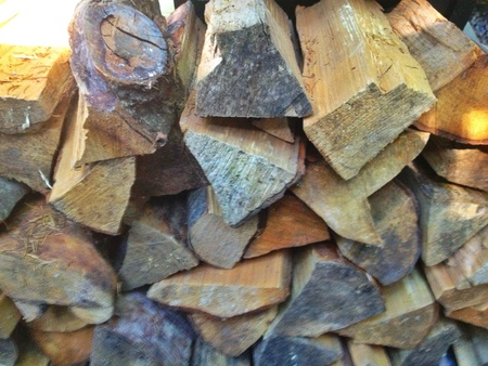 Stock piling firewood.  版權商用圖片