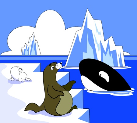 Vector illustration of an arctic scene with sea lions and a killer whale