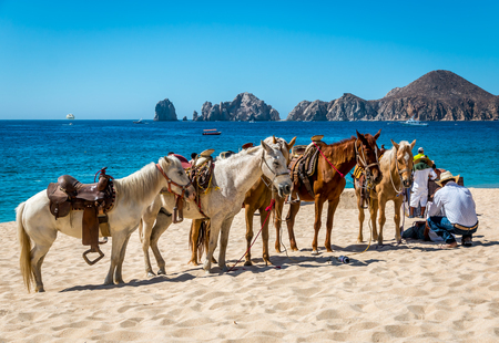Cabo San Lucas, Mexico- April 272016 : A Mexican vaquero tends to his horses on a resort beach in Cabo San Lucas as he whats for tourist customers.