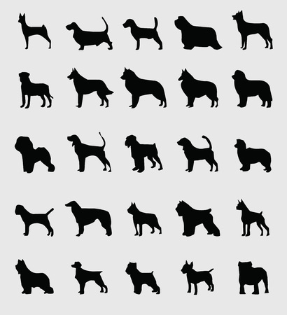 sillhouette: sillhouette of dogs