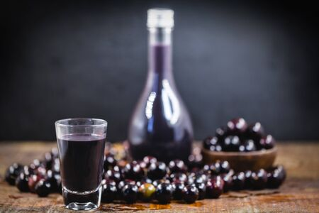 Brazilian handmade liqueur. Liqueur extracted from the fruit called Jabuticaba, native fruit from Brazil. Gastronomic tourism.