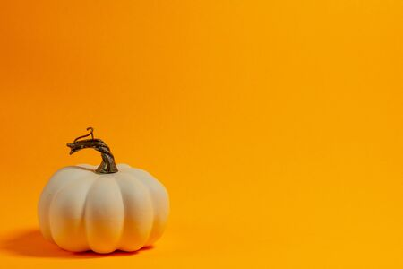 White decorative thanksgiving pumpkin front view on an orange background with room for text