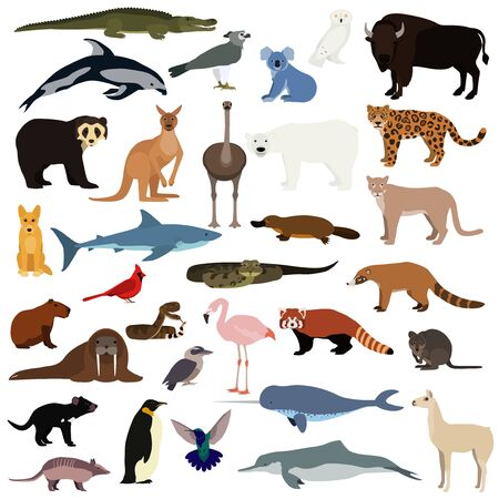 Big animal collection. Vector set of wild animals and birds. Stock illustration isolated on white background.