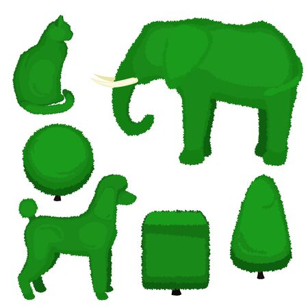Set of topiary bushes of different shapes. Vector illustration of a elephant, poodle, cat, pyramid, sphere and cube topiary isolated on white background. Stock Illustratie