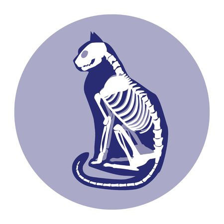 Sitting cat skeleton and silhouette vector illustration.