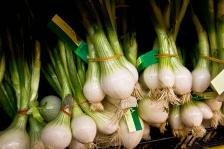 Bunches of spring onions at fresh food market Stock Photo
