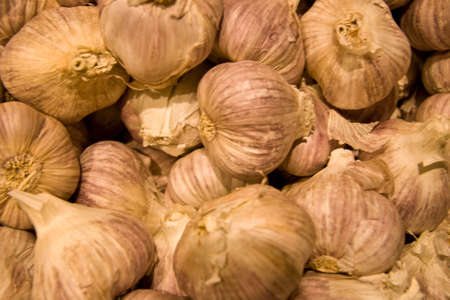 Fresh bulbs of garlic at fresh food market Stock Photo
