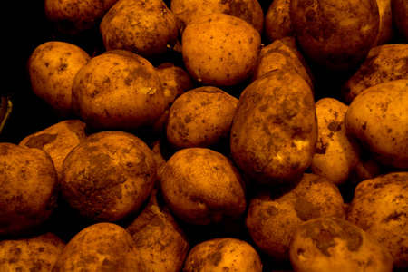 Fresh unwashed potatoes at fresh food market