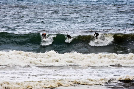 Three surfers catching a wave