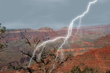 Lightening striking at Grand Canyon near dead tree.
